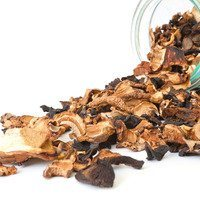 Forest Mix Mushrooms Dried 1 lb.