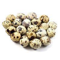 Quail Eggs 24 pcs.