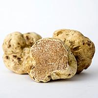 Italian Fresh Winter White Truffles Whole
