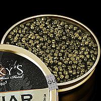 Persian Osetra Farmed Caviar, Persicus Caviar